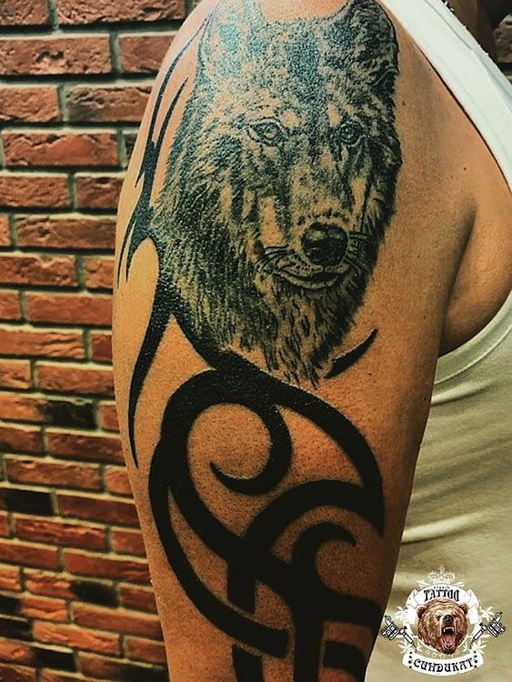 Сделать тату на плече волк в Красноярске фото
