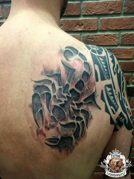 Сделать тату на спине скорпион в Красноярске фото